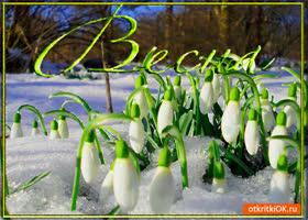 Открытка весна время мечтать