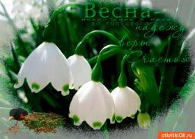 Картинка весна время новых надежд