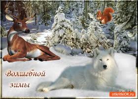 Открытка волшебной вам зимы