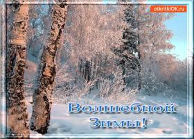 Открытка волшебной зимы