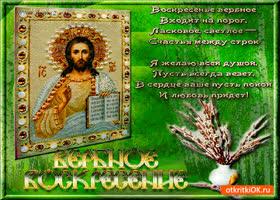 Открытка воскресенье вербное любви всем принесёт