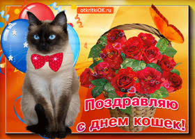 Открытка вот тебе корзина с розами в день кошек