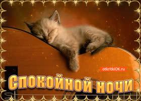 Картинка вот тебе открытка, желаю спокойной ночи