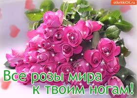 Открытка все розы мира к твоим ногам!