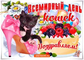 Картинка всемирный день кошек, поздравляю