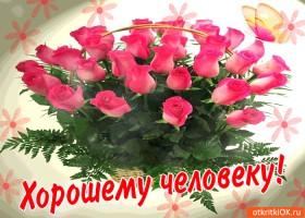 Картинка хорошему человеку красивые цветы