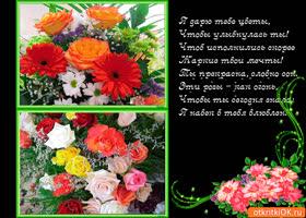 Открытка я дарю тебе цветы чтоб улыбалась