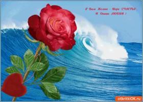 Картинка я вам желаю море счастья и океан любви