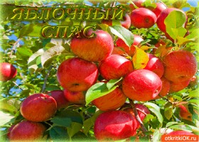 Картинка яблочный спас! свежие яблоки ждут нас