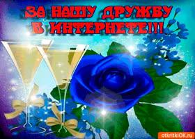 Открытка за нашу дружбу в интернете. держи розу