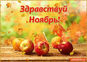 Открытка здравствуй ноябрь!