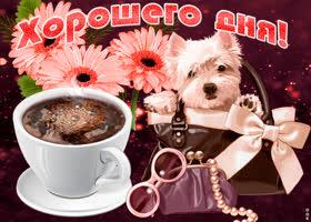 Открытка желаю тебе прекрасного и хорошего дня