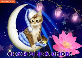 Открытка желаю тебе прекрасных снов, спокойной ночи