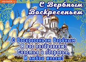 Картинка живая открытка с вербным воскресеньем