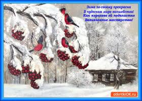 Картинка зима по-своему прекрасна