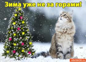 Картинка зима уже не за горами!