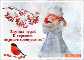 Открытка зимних чудес