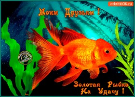 Картинка золотая рыбка на удачу